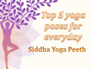 Top 5 yoga poses for everyday