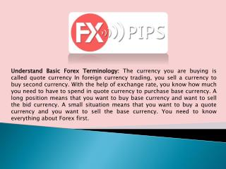 How To Start Forex Trading With The Help Of Consultant