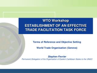 Terms of Reference and Objective Setting          World Trade Organisation Geneva   Stephen Fevrier Permanent Delegation