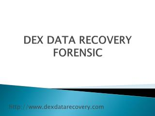 Data Recovery System Supplier in Pune - Dex Data Recovery Forensic