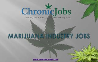 Marijuana Industry Jobs | Chronic Jobs