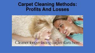 Carpet Cleaning Methods: Profits And Losses