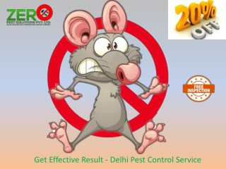 Get Effective Result - Delhi Pest Control Service