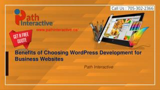 Top Advantages of Choosing WordPress CMS for Business Website