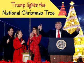 Donald Trump and Melania light the National Christmas tree
