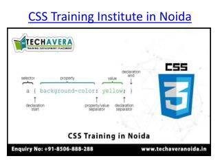 CSS Training Institute in Noida