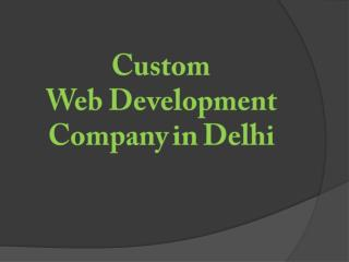 Custom Web Development Services, Web Development Company in Delhi