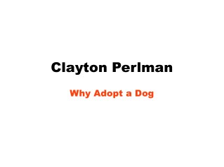 Clayton Perlman-Why Adopt a Dog