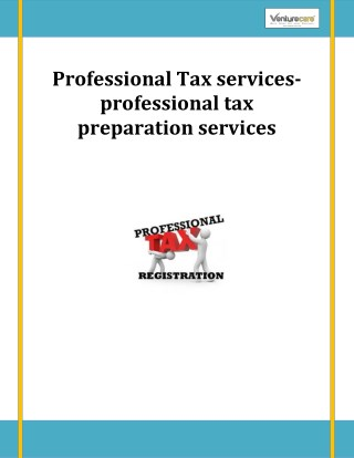 Professional Tax services-professional tax preparation services