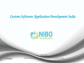 Custom Software Application Development India - NIBO Technologies