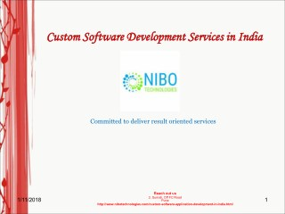 Custom Software Development Services in India - NIBO Technologies