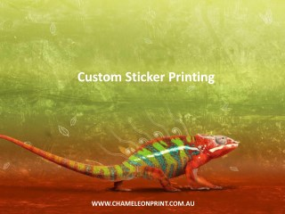 Custom Sticker Printing - Chameleon Print Group