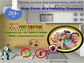 Priceless Services Pest Control Noida, Delhi NCR