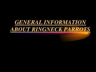 RINGNECK PARROTS - GENERAL INFORMATION