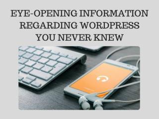 Great Services of Outsource WordPress Theme Customization