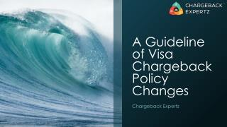 A Guideline of Visa Chargeback Policy Changes