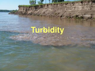 Turbidity