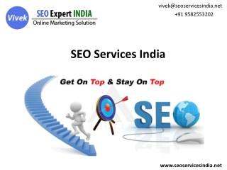 SEO Expert Delhi - Technique Moves Around Improving Websites