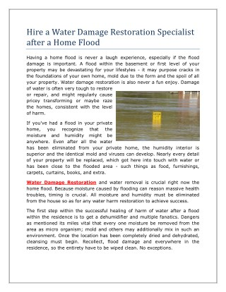 Hire a Water Damage Restoration Specialist