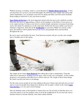 Lawn Care In Winter – Tips On Caring For Winter Lawns