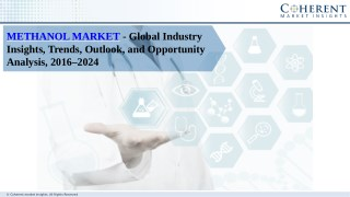 Methanol Market- Industry Insights, Trends, and Forecast 2024
