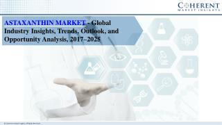 Methanol Market- Industry Insights, Trends, Outlook and Forecast 2016-2024