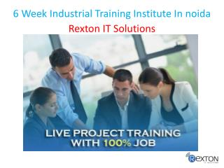 6 Week Industrial Training Institute In noida