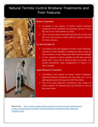 Natural Termite Control Brisbane Treatments and Their Features