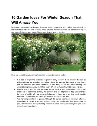 10 Garden Ideas For Winter Season That Will Amaze You