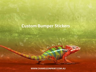 Custom Bumper Stickers - Chameleon Print Group