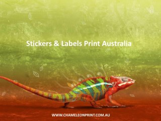 Stickers & Labels Print Australia - Chameleon Print Group