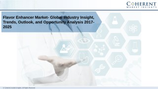Flavor Enhancer Market - Global Industry Insights, Trends, and Forecast 2025
