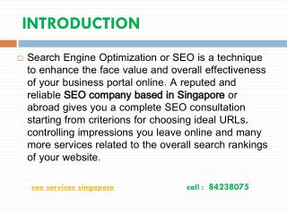 Best SEO Services Agency in singapore.