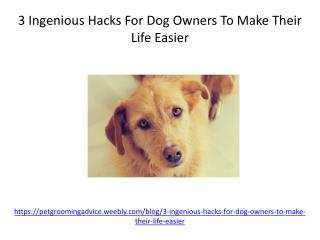 3 Ingenious Hacks For Dog Owners To Make Their Life Easier