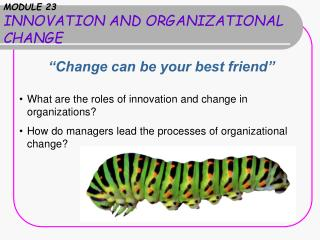 MODULE 23 INNOVATION AND ORGANIZATIONAL CHANGE