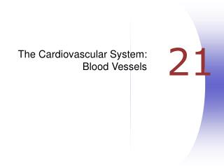 The Cardiovascular System: Blood Vessels