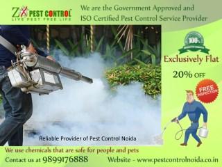 Reliable Provider of Pest Control Noida