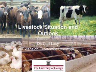 Livestock Situation and Outlook
