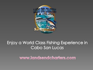 Enjoy a World Class Fishing Experience in Cabo San Lucas