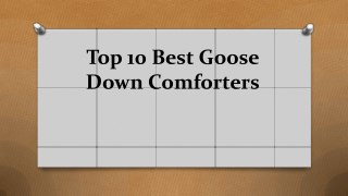 Top 10 best goose down comforters