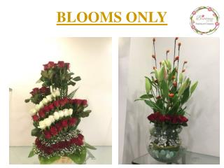 Beautiful Flower Arrangements for Valentine's day Special – Blooms Only