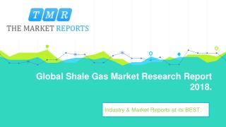 Global Shale Gas Market Segmentation by Product Types and Application with Forecast to 2025