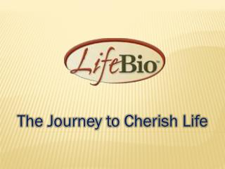 The Journey to Cherish Life