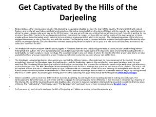 Get Captivated By the Hills of the Darjeeling