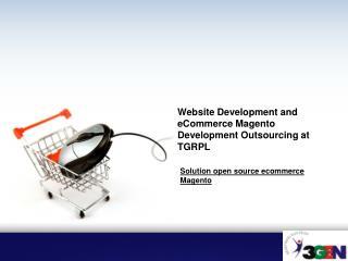 Website Development and eCommerce Magento Development