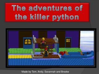 The adventures of the killer python