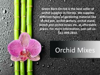 Shop Online Best Orchid Mixes in Florida at Reasonable Prices