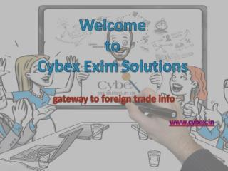 Import Export Data Provider Cybex Exim Solutions