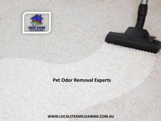 Pet Odor Removal Experts