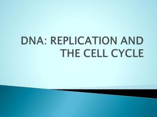 DNA molecule described as double helix.